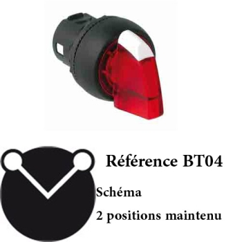 BOUTON TOURNANT A MANETTE 2 POSITIONS LUMINEUX