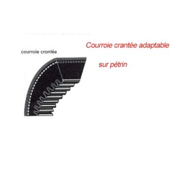 COURROIE DE PETRIN BERTRAND