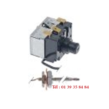 THERMOSTAT DE SECURITE - JUMO - Type 602031/80