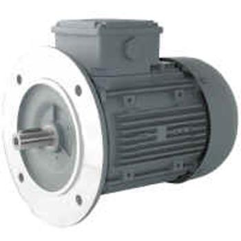MOTEURS ELECTRIQUES TRIPHASES TYPE B5 1000T/MIN 6 PÔLES - 0.18 kW